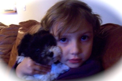 hava_havanese_puppy_set4_(21)